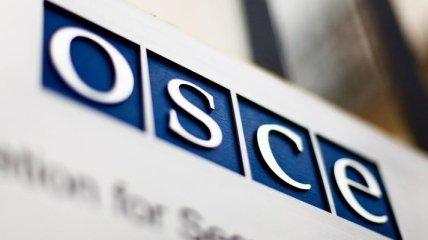 """ОБСЕ призвала Путина ветировать закон о """"нежелательных организациях"""""""