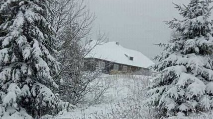 Карпаты замело снегом: фото