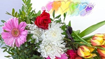 Короткие поздравления с Днем Рождения на 26 февраля: стихи и открытки