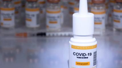 Назальні вакцини зараз тестують на ефективність і безпеку
