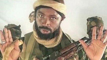 """""""Программа работает не так"""": США отказались награждать боевиков """"ИГИЛ"""", ликвидировавших главаря """"Боко Харам"""""""