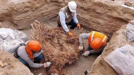 Найденные останки лежат там примерно 800 лет