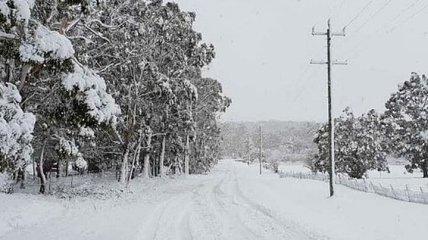 Зима в Австралии: снегопады парализовали Южный Уэльс (Видео)