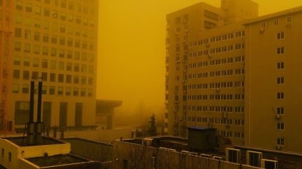 Опасно, но смешно: смертельная песчаная буря в Китае попала в мемы