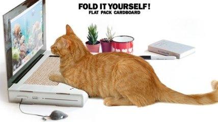 В Британии создали первый ноутбук для котов