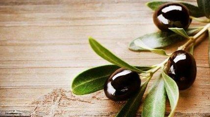 Неожиданная польза оливковых листьев