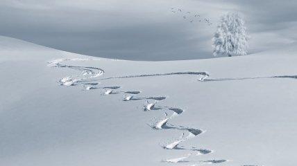 Снежная стихия: 10 наиболее крупных снегопадов в истории (Фото)