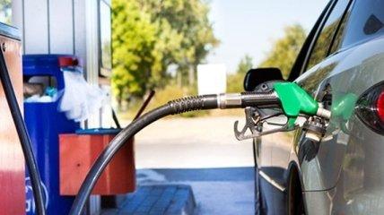 В Украине упали цены на бензин и дизельное топливо