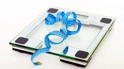 Ожирение: главная причина лишнего веса