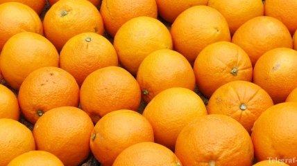 Испания - крупнейший производитель апельсинов в ЕС
