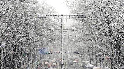 Сотни автомобилей заблокированы в Японии из- за снегопадов