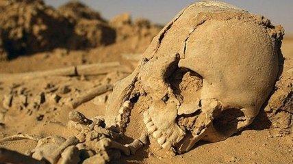 Когда Сахара была зеленой: раскопки, рассказывающие о прошлом (Фото)
