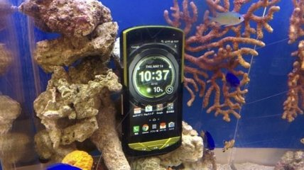 Представлен смартфон, который не боится морской воды