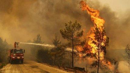 Постапокалиптические пейзажи: огонь бушует на популярных курортах Турции, туристов эвакуируют (фото)