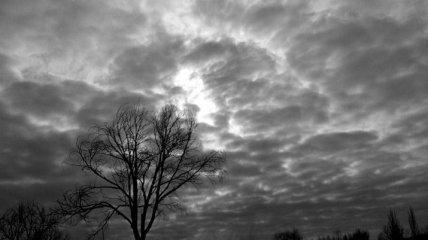 Пасмурная погода в понедельник ко вторнику сменится грозами по всей Украине