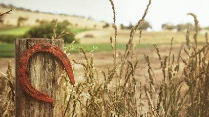 Обряды на Покров помогут привлечь удачу