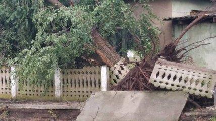 """""""Думала, землетрясение начинается"""": под Одессой ураган срывал крыши школ и предприятий (фото)"""