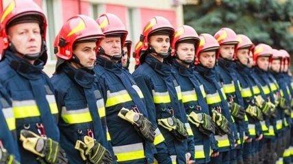 ГСЧС: спасатели ликвидировали лесной пожар в Днепропетровской области