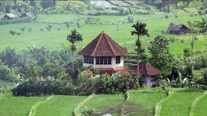 Мечты сбываются: насладись пейзажами на Бали в один клик (Фото)