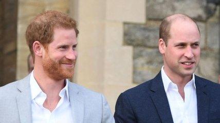 Принцы Уильям и Гарри заказали статую принцессы Дианы к ее 60-летию