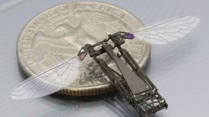 RoboBee: Робот-амфибия может не только плавать, но и летать