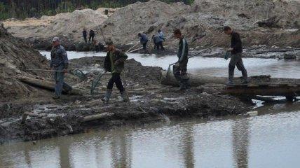 В Ровенской области с начала года открыто более 100 дел против добытчиков янтаря