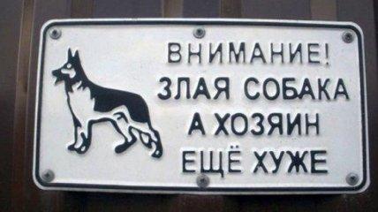 """""""Осторожно, злая собака"""": юморные и креативные таблички"""