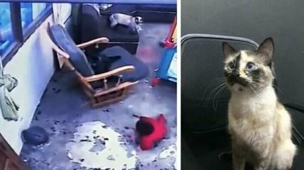 Видео спасения младенца стало безумно популярным в сети