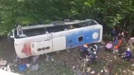 На Кубани разбился автобус с туристами - есть погибшие (видео)