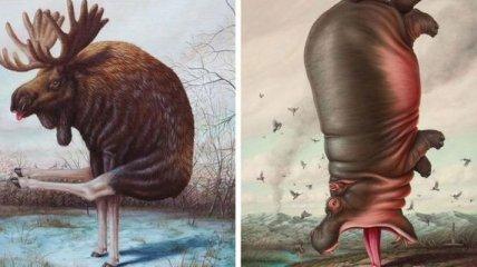 Всем йогу: уморительные иллюстрации животных, которые решили заняться спортом
