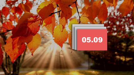 Праздник 5 сентября