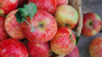 """К концу весны яблоки станут """"золотыми"""": эксперты сообщили о серьезном подорожании фруктов"""