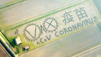 """Привлек внимание: В Италии фермер на своем поле """"создал"""" коронавирус"""