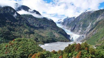 Ледник Франца-Иосифа в Южных Альпах (Фото)