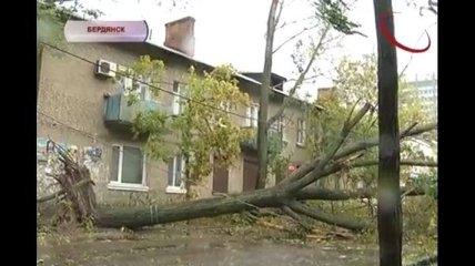Буря в Бердянске: ветром повалены деревья, оборваны провода (Видео)