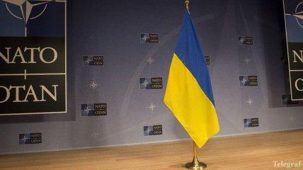 Разработка программы Украина-НАТО находится на финишной прямой