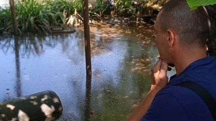 Никто не помог: после потопа в Одессе нашли целое кладбище домашней птицы (фото, видео)