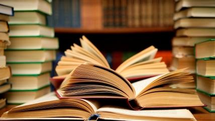 В библиотеки планировали прислать 333 372 экземпляра 689 изданий.