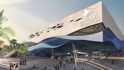 Гигантский аквариум открылся в Анталье