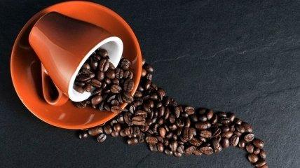 Ученые рассказали, что кофеин снижает риск ожирения
