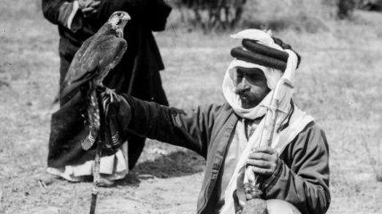 Культура и образ жизни бедуинов на снимках конца 19 века (Фото)