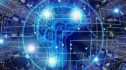 Влияние физической нагрузки на наш мозг