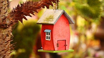 Правительство ускорит покупку и строительство жилья для детей-сирот