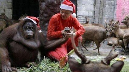Как праздновали Рождество в уходящем 2018 году (Фото)
