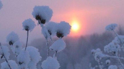 Зима в Украине: Новый год без снега и морозный февраль