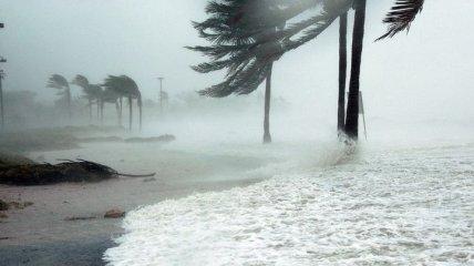 """""""Тенденция есть, и она реальна"""": ураганы в будущем станут сильнее"""