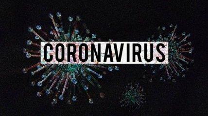 """Почему """"коронавирус"""" так называется и другие понятия инфекции"""