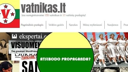 """В Литве запустили аналог украинского """"Миротворца"""" - сайт """"Vatnikas"""""""