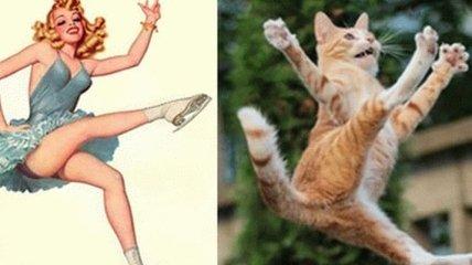 Смешные коты, которые позируют, как пин-ап модели