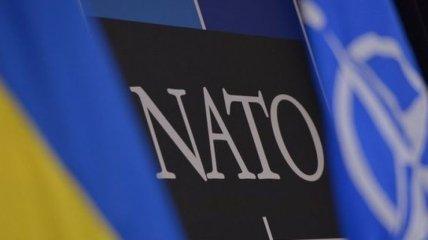 В Киев прибыла оценочная миссия НАТО
